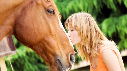 Benefits of Hemp Oil for Horses