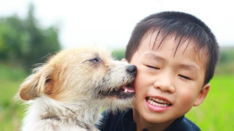 8 Life Lessons Your Kids Can Learn From Caring for Pets