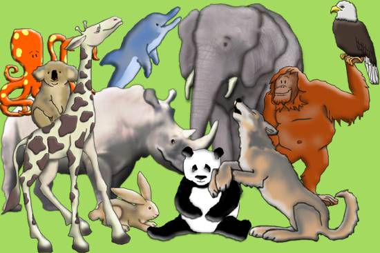 A Lot Of Animals, How Do You Select?